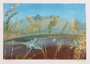 jan ten hoeve heerenveen kunst schilderij grafiek litho kunstenaar friesland friese kunst lijstenmaker heerenveen skoander.com