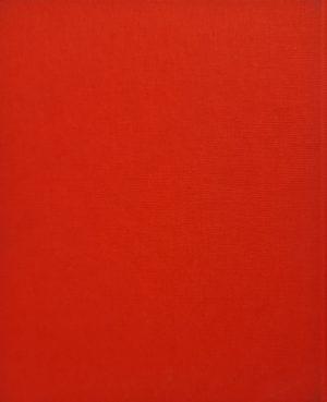Meer dan rood, wit en blauw More than red, white and blue Kunstaankopen door het Ministerie van Buitenlandse Zaken 2001 ISBN 90-5328-292-0 isbn 9053282920 skoander.com